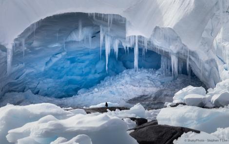 Antarctica-7580